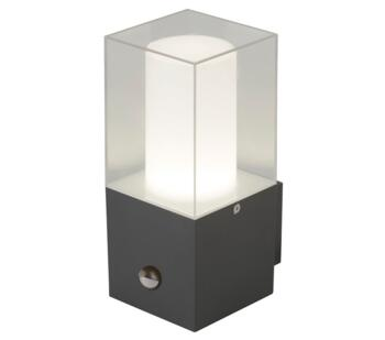 Outdoor Wall Light With Sensor Dark Grey & Clear Finish - 2581GY