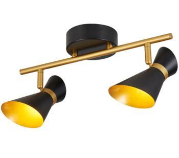 Matt Black & Gold 2 Light Split-Bar LED Spotlight - 5922BG