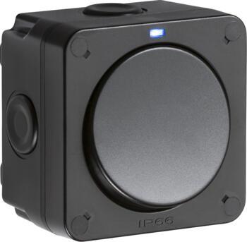 Black IP66 Outdoor Weatherproof Single Light Switch - Blue Neon - OP2