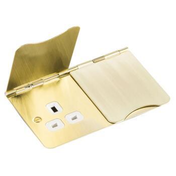 Brushed Satin Brass Floor Socket  - Double